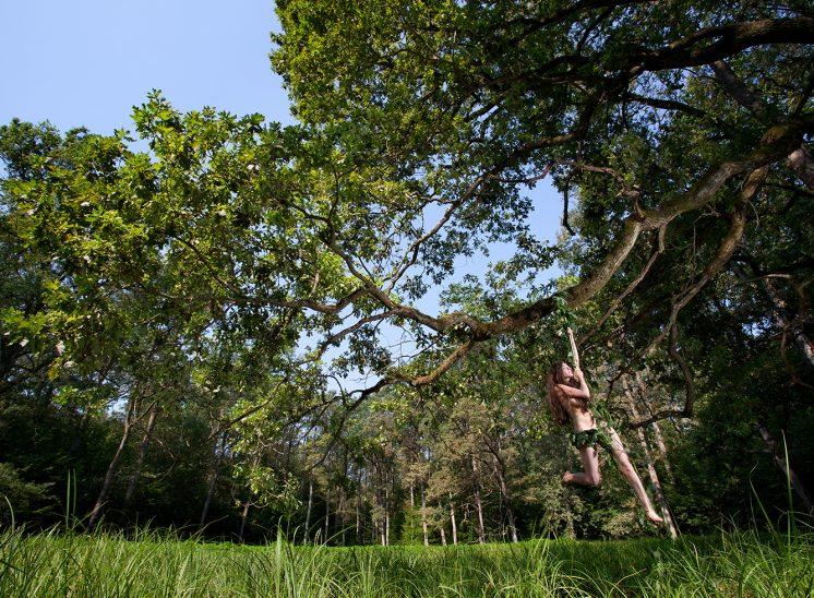 šumska dekla (divlja dekla)