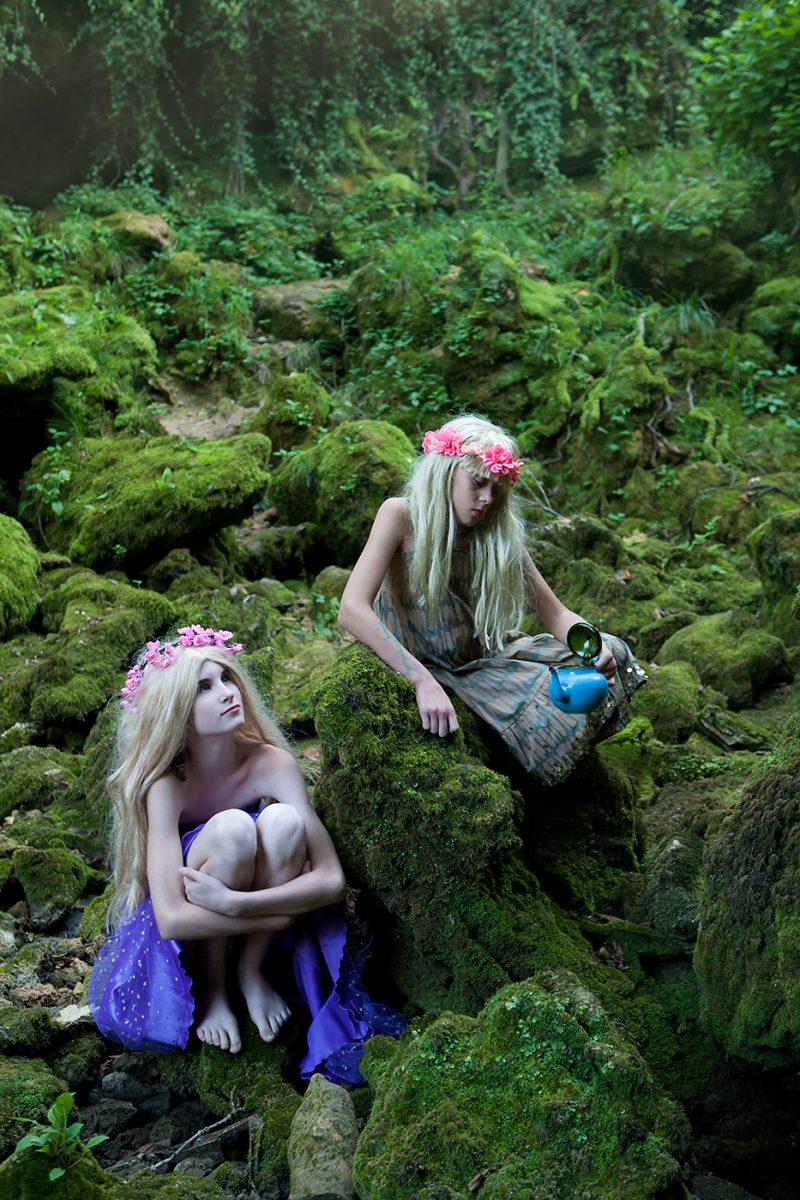 vile i vilenjaci artusi